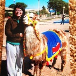 finding a llama in Argentina - summer 2009